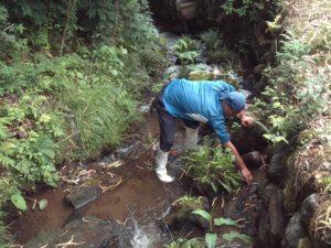 水路の補修
