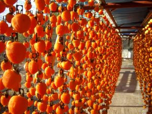 市田柿の干し場