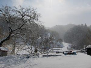 雪の日の風景